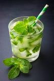 Limonata fresca fredda con la menta Immagine Stock Libera da Diritti