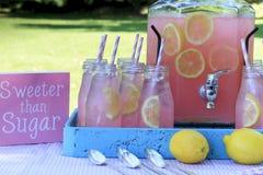 Limonata rosa al picnic in parco Fotografie Stock Libere da Diritti