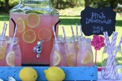 Limonata rosa al picnic in parco Fotografia Stock