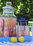 Limonata rosa al picnic in parco Fotografia Stock Libera da Diritti