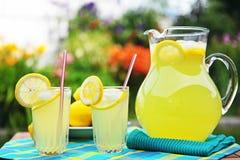 Limonata schiacciata fresca Fotografie Stock Libere da Diritti