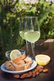 Limoncello and biscotti Stock Images