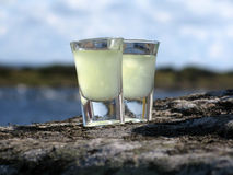 Limoncello on the rocks Stock Images