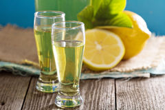 Limoncello in small shots Stock Images
