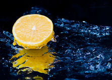 Limone Fotografia Stock Libera da Diritti