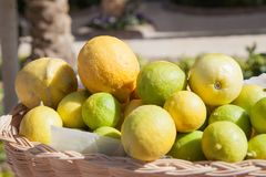 Limone alla linea del buffet nel ramo dell'hotel Merce nel carrello fresca del limone e colpo del fuoco selettivo Fotografie Stock Libere da Diritti
