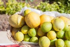 Limone alla linea del buffet nel ramo dell'hotel Merce nel carrello fresca del limone e colpo del fuoco selettivo Fotografie Stock