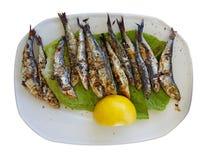 Limone arrostito delle sardine Fotografie Stock Libere da Diritti