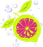 Limone astratto Immagini Stock