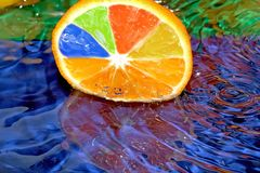 Limone caduto Fotografie Stock Libere da Diritti