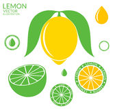 Limone Calce illustrazione di stock