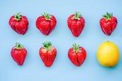 Limone creativo della disposizione e sette grandi fragole su fondo blu in due linee vista superiore Immagini Stock