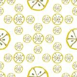 Limone del modello Immagini Stock Libere da Diritti