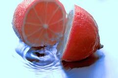 Limone dentellare Fotografie Stock Libere da Diritti