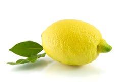 Limone e foglio verde isolati su bianco Fotografia Stock Libera da Diritti