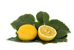 Limone e la sua sezione fotografia stock