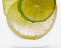 Limone e limetta in acqua scintillante fotografia stock libera da diritti