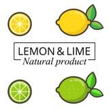 Limone e limetta del fumetto con testo Immagine Stock