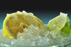 Limone e limetta su ghiaccio Fotografie Stock Libere da Diritti