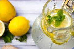 Limone e limonata Immagine Stock Libera da Diritti