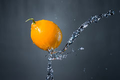 Limone e spruzzata di acqua su fondo grigio Fotografia Stock