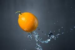 Limone e spruzzata di acqua su fondo grigio Fotografie Stock Libere da Diritti