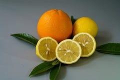 Limone ed arancia organici sui precedenti grigi - Immagini Stock Libere da Diritti