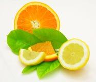 Limone ed arancio Fotografia Stock Libera da Diritti