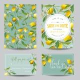 Limone, foglie e fiori Partecipazione di nozze Scheda _1 dell'invito Fotografia Stock