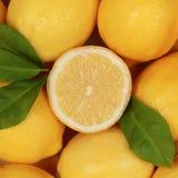 Limone fresco Immagine Stock