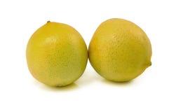 Limone fresco Fotografia Stock