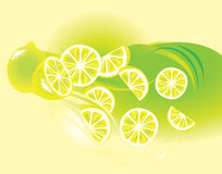 Limone, frutta illustrazione di stock