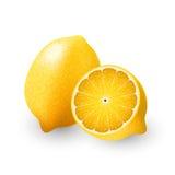 Limone giallo e una metà del limone, calce, frutta, trasparente, vettore Fotografia Stock