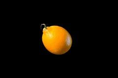 Limone isolato su priorità bassa nera Fotografia Stock