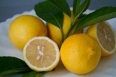 Limone organico e permesso sul piatto bianco con i precedenti grigi - Fotografia Stock
