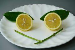 Limone organico e permesso sul piatto bianco con i precedenti grigi Immagine Stock