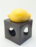 Limone su un fondo bianco Fotografia Stock Libera da Diritti