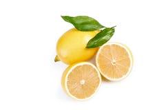 Limone succoso Fotografie Stock