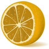 Limone sugoso Fotografie Stock