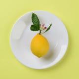 Limone sul piatto bianco Immagine Stock Libera da Diritti