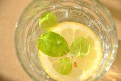 Limone in un'acqua Fotografie Stock