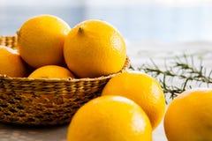Limones 1 Foto de archivo libre de regalías