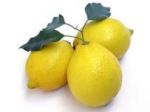 Limones Foto de archivo