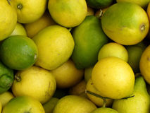 Limones Imagen de archivo