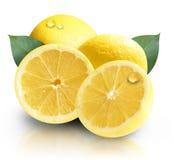 Limones amarillos de la fruta aislados Imagen de archivo