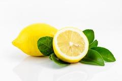 Limones con las hojas Imágenes de archivo libres de regalías