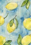 Limones con las hojas en fondo azul Ilustración de la acuarela Imagen de archivo