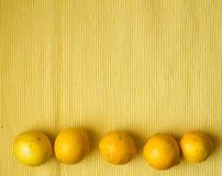 Limones en fila Fotografía de archivo