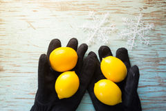 Limones en guantes negros del invierno Imagenes de archivo