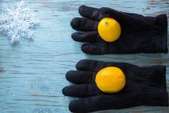 Limones en guantes negros del invierno Fotos de archivo